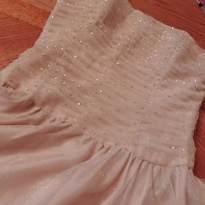 Glittery Sequined, Netted Glam Dress
